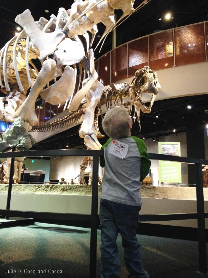 perot museum dinosaurs