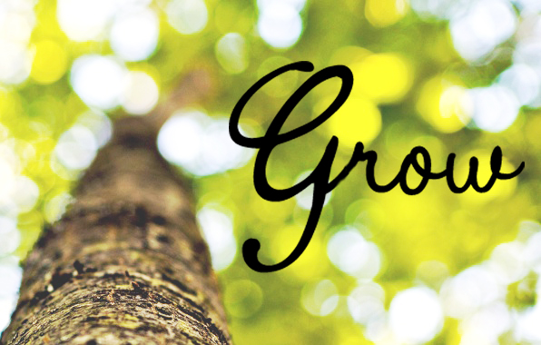 grow word of the year 2015
