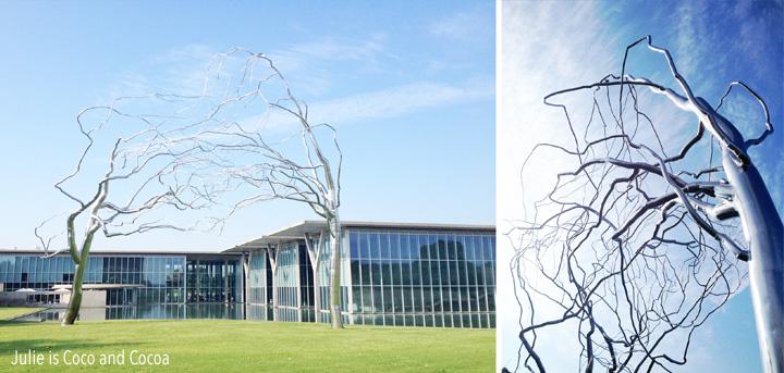 modern art museum fort worth empty modern tree