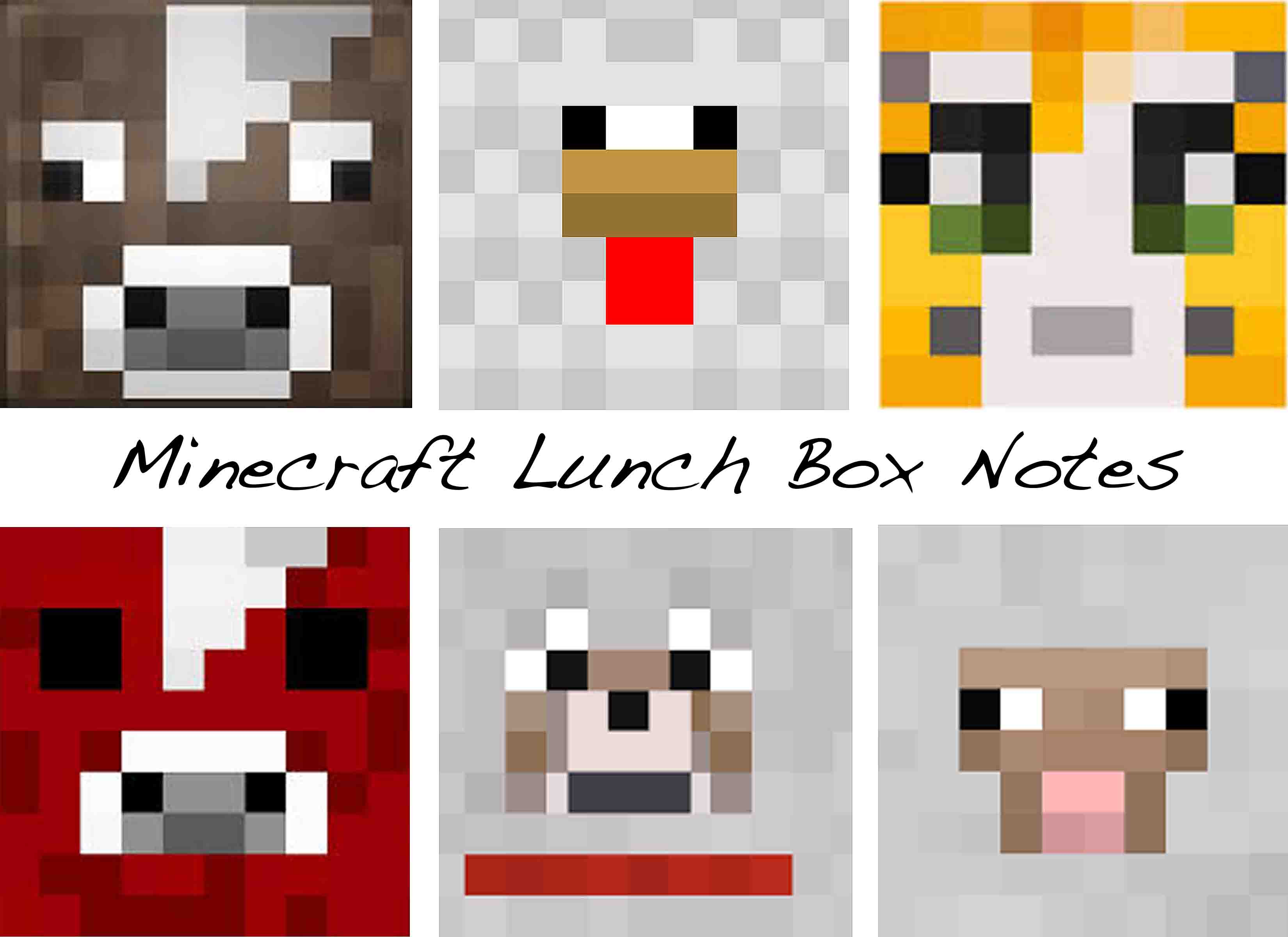 Minecraft lunch box notes