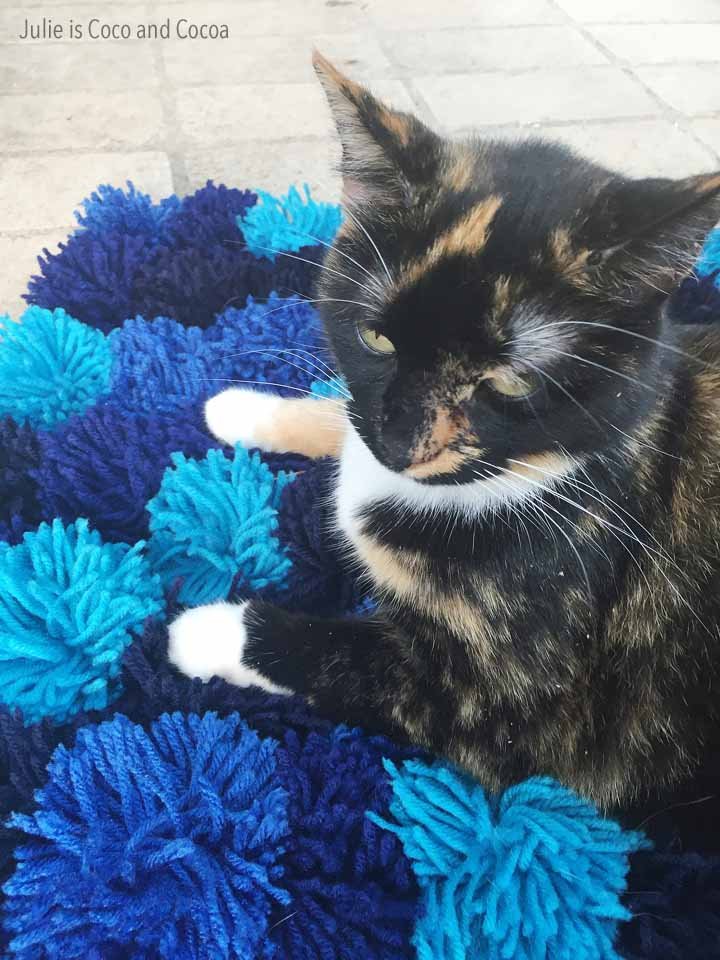 2016 top 10 DIY Pom Pom Cat Bed