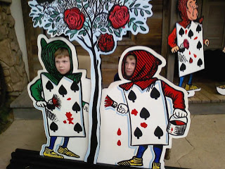 The twins adventures in Wonderland