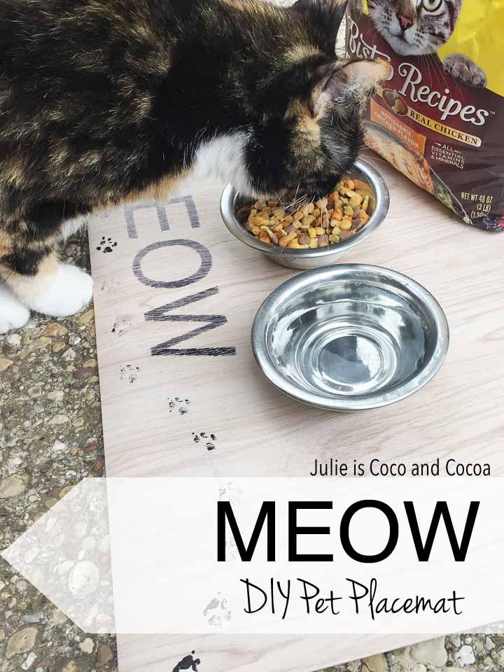 Meow DIY Pet Placemat