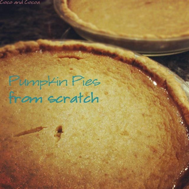 Pumpkin pies from scratch