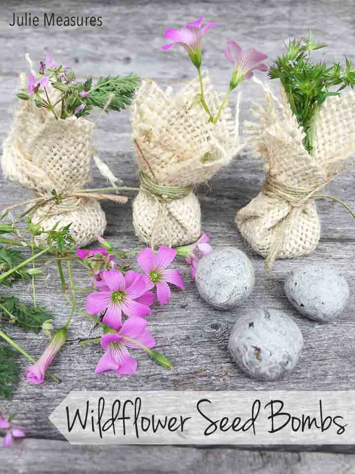 DIY Wildflower Seed Bombs