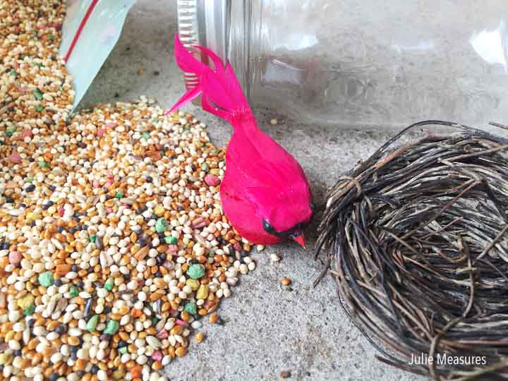 Last Minute Birdseed Hostess Gift