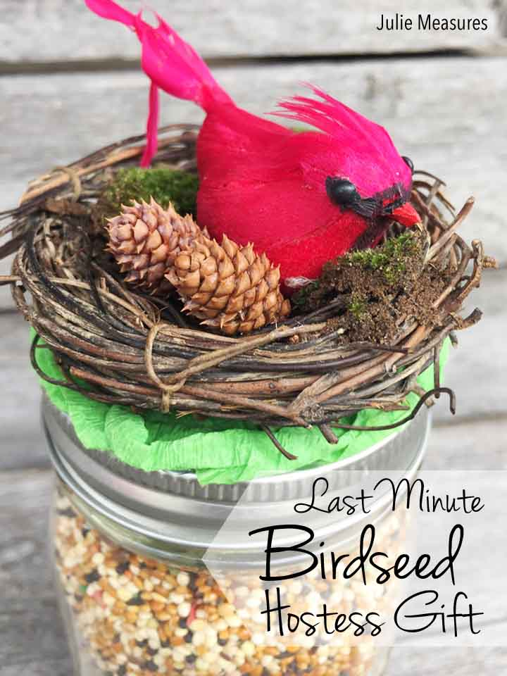 Last Minute DIY Birdseed Hostess Gift