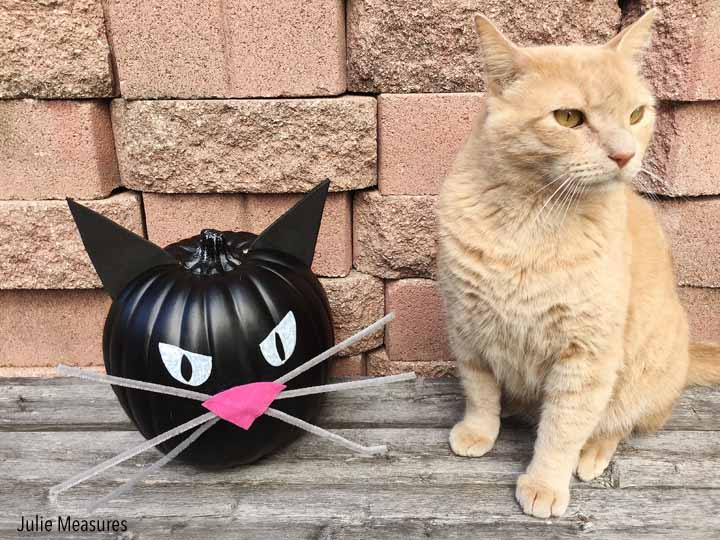 DIY Black Cat Pumpkin