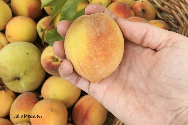 Storing fresh peaches
