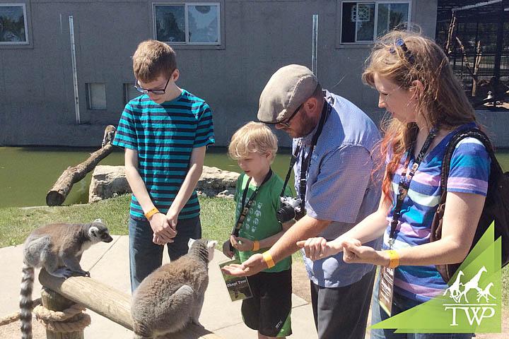 Family Friendly Activities in Wichita