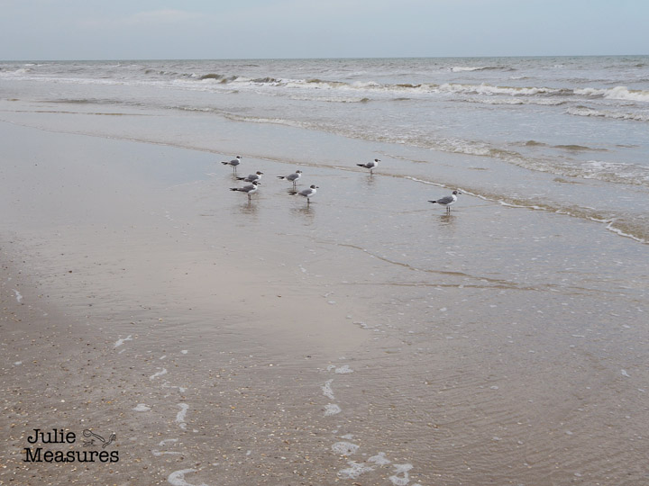 Galveston Beach Vacation